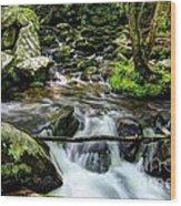 Smoky Mountain Stream 4 Wood Print