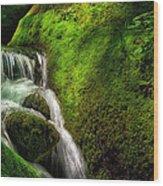 Smoky Mountain Stream And Boulders E223 Wood Print