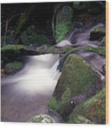 Smoky Mountain Stream Wood Print