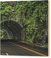 Smoky Mountain Tunnel In The Rain E123 Wood Print