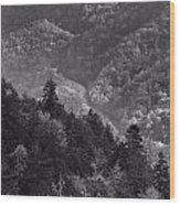 Smoky Mountain View Black And White Wood Print