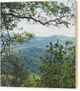 Smoky Mountain View Laurel Falls Trail Wood Print