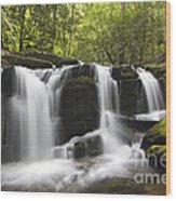 Smoky Mountain Waterfall - D008427 Wood Print