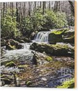 Smoky Mountain Waterfalls Wood Print