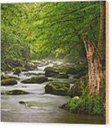 Smoky Mountains Solitude - Great Smoky Mountains National Park Wood Print