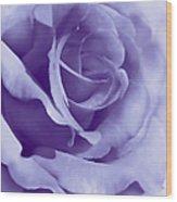 Smoky Purple Rose Flower Wood Print