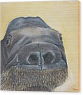 Smooshi Wood Print
