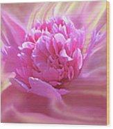 Smooth Pink Wood Print
