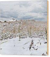Smuggler's Beach Snow Cape Cod Wood Print