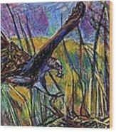 Snail Kite Wood Print