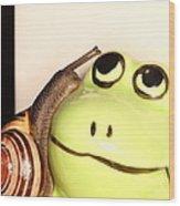 Snail Looking At Frog Wood Print