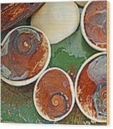 Snail Stones Wood Print