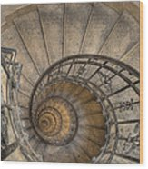 Snailing Stairs Wood Print