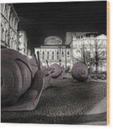 Snails Attack Milan Bw Wood Print