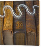 Snake And Antique Books Wood Print
