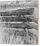 Snake Fence  Wood Print