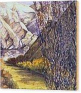 Snake River Landing Wood Print