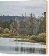 Snake River Near Cattleman's Bridge Site -  Grand Tetons Wood Print