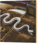 Snake Skeleton And Old Books Wood Print