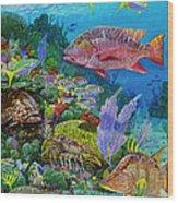 Snapper Reef Re0028 Wood Print