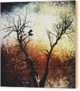 Sneakers In The Tree Wood Print by Bob Orsillo