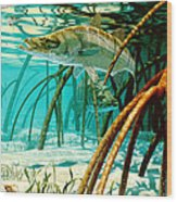 Snook In The Mangroves Wood Print