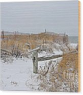 Snow And Sand Wood Print by Catherine Reusch Daley