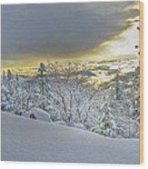 Snow And The Sierra Highway 88 Wood Print