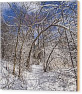 Snow Arches Wood Print