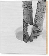 Snow Around The Tree Wood Print