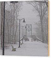 Snow At Bulls Island - 05 Wood Print