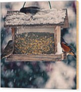 Snow Birds Wood Print