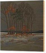 Snow Wood Print