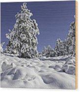 Snow Bomb Wood Print by Tom Wilbert