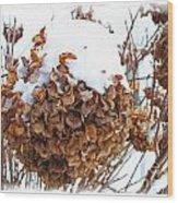 Snow Bonnet Wood Print