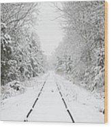 Snow Bound Wood Print by Nancy Edwards
