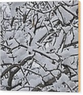 Snow Branches 2-1-15 Wood Print