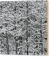 Snow Branches Wood Print