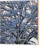 Snow Bright Wood Print