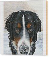 Snow Bumper Wood Print