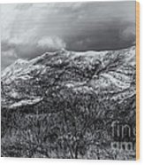 Snow Capped 45 Wood Print