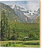 Snow-capped Andes Mountains With Snowline Above 17000 Feet-peru Wood Print