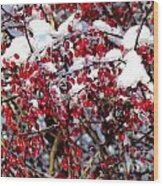 Snow Capped Berries Wood Print
