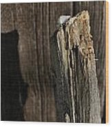 Snow Capped Fence Post Wood Print