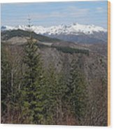 Snow Capped View Wood Print