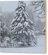 Snow Conifer 2-1-15 Wood Print