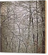 Snow Cover Forest Wood Print by Dawdy Imagery