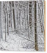 Snow Covered Forest 4 Wood Print