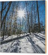 Snow Covered Forest Wood Print