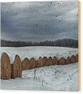 Snow Covered Hay Bales Wood Print by Kathy Jennings